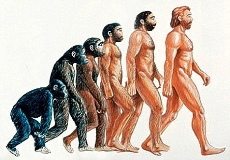 Origins of man